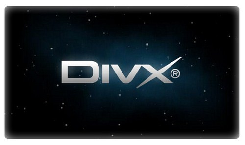 Conectores de audio y video en el Reproductor de Divx